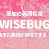 wisebug